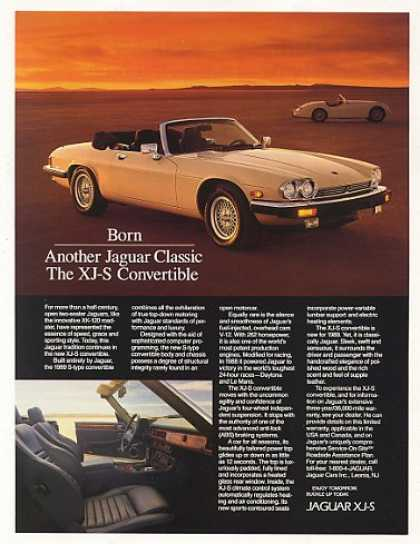 Jaguar XJ-S Convertible Born Classic Photo (1989)