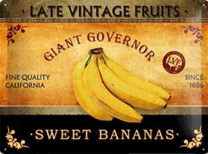 Late Vintage Fruits