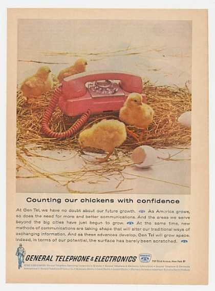GTE Gen Tel Telephone Growth Baby Chicks (1962)