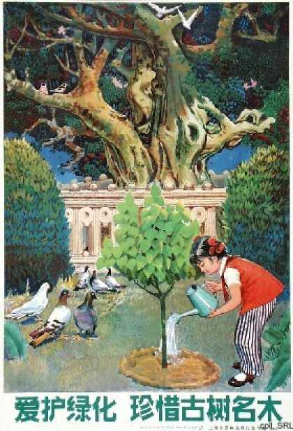Cherish greening, treasure old and famous trees (1983)