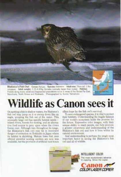 Canon Color Laser Copier – Blakiston's Fish Owl (1988)