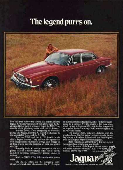 "Jaguar In Field ""The Legend Purrs On."" (1975)"