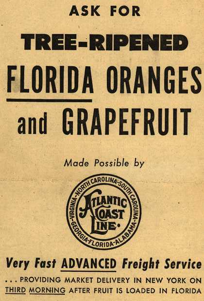 Atlantic Coast Line Railroad's advanced freight service – Ask FOR TREE-RIPENED FLORIDA ORANGES and GRAPEFRUIT (1948)
