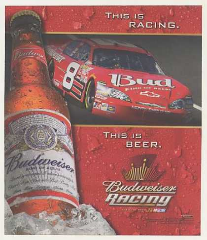 Budweiser Beer NASCAR Dale Earnhardt Jr #8 Car (2007)