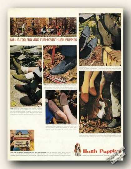 Hush Puppies Ad Basset Hound Photos (1962)
