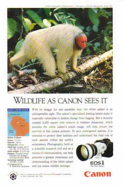 Canon EOS1 Camera Lens – White Uakari Monkey (1991)