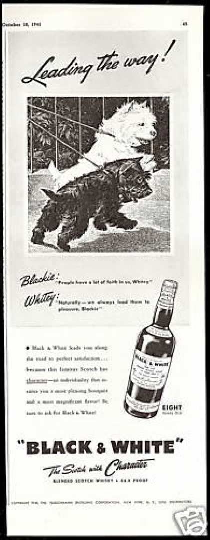 Scottish Terrier Westie Leading B&W Scotch (1941)