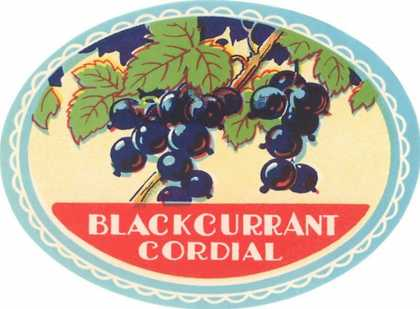 Blackcurrent Cordial Label