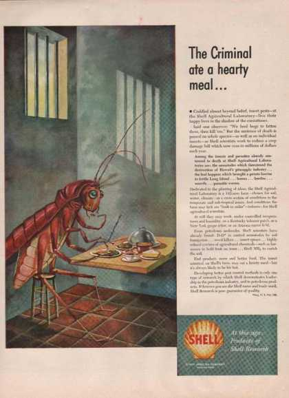 Shell Car Motor Oilhearty Meal (1949)