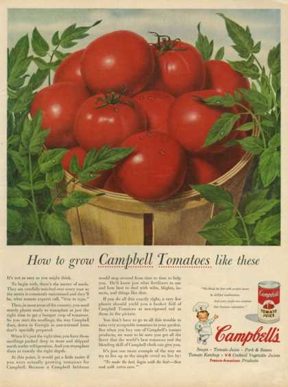 Campbell's, USA (1950)