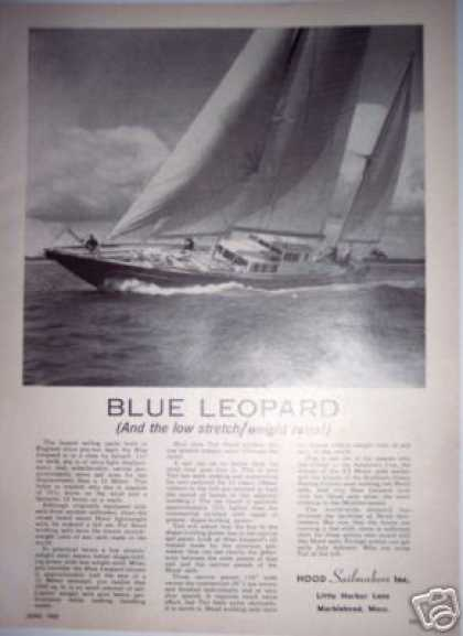 Original Boat Ad Blue Leopard 112' Sailboat Yacht (1965)