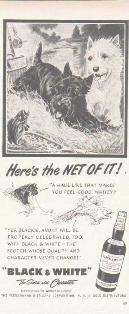 Black & White Scotch Whiskey Scottish Terriers – Net Fishing (1951)