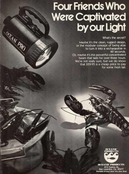 Oceanic Underwater Diving Light (1976)
