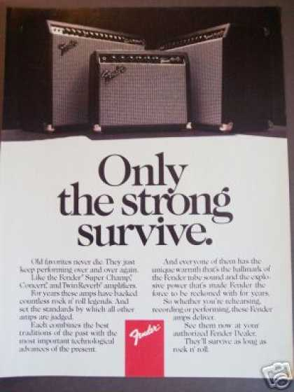 Fender Guitar Amp Champ Twin Reverb Photo (1985)