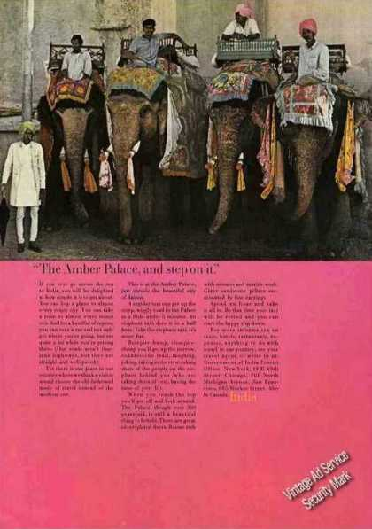 Amber Palace Jaipur India Elephant Taxis Photo (1968)