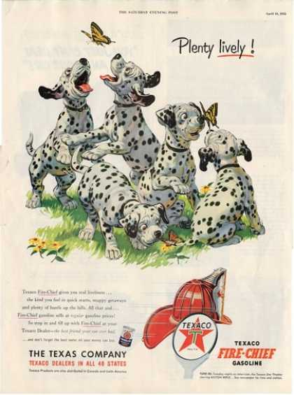 Texaco Dalmatian Puppy Dog Puppies Ad T (1953)