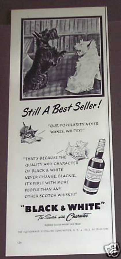 Black & White Scotch Whisky Dogs (1954)