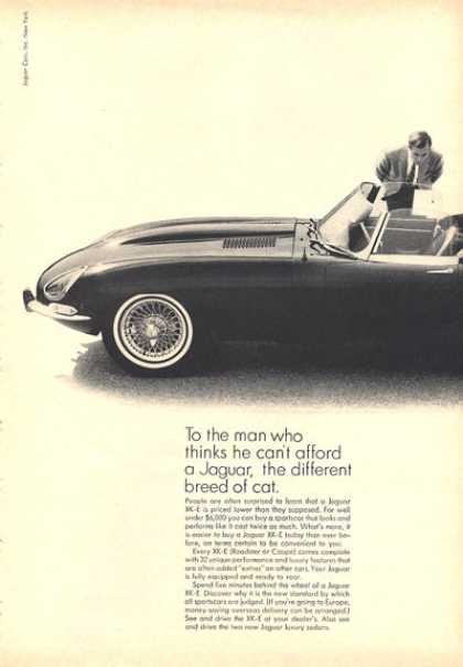 Jaguar Xk-e Roadster (1964)