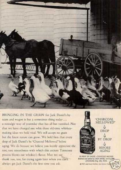 "Jack Daniel's Whiskey Ad ""Bringing In the Grain... (1958)"
