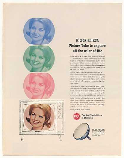 RCA Color TV Television Picture Tube (1963)