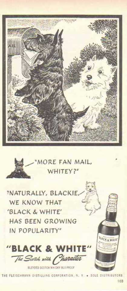 Black & White Scotch Whiskey Scottish Terriers – More Fan Mail (1949)