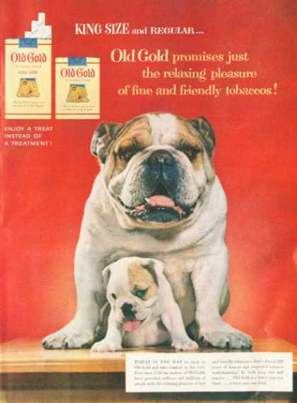 Old Gold Cigarettes English Bulldog (1954)