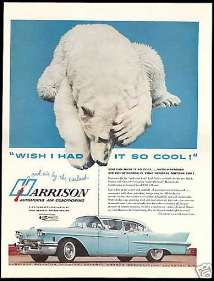Cadillac 4dr Car Photo Harrison Air Polar Bear (1958)