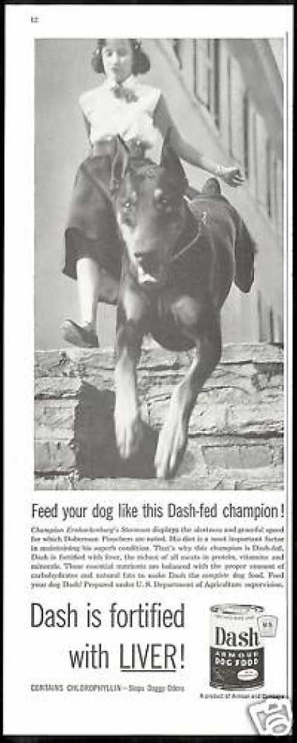 Doberman Pinscher Champion Dash Dog Food (1954)