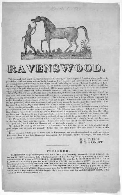 Ravenswood. This thorough bred son of the famous imported Sir Harry, out of the imported Dutchess, whose pedigree is given below ... will stand the en (1833)