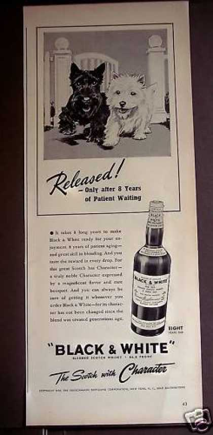 Scottish Terrior Dogs Black & White Whisky (1939)