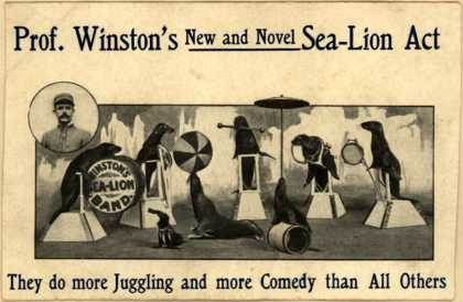 Prof. Winston's Sea-Lion Act – Prof. Winston's New and Novel Sea-Lion Act