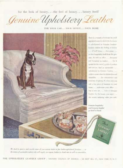 Genuine Leather Upholstery Boston Terrier (1952)