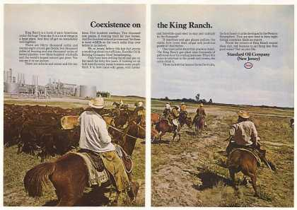 King Ranch Texas Esso Standard Oil Photo (1970)