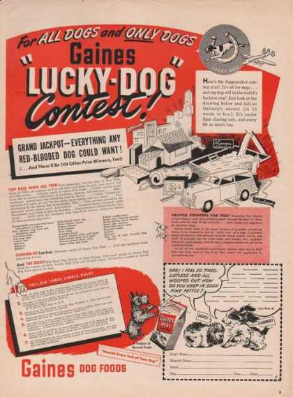 Gaines Dog Food Lucky Dog Contest (1949)