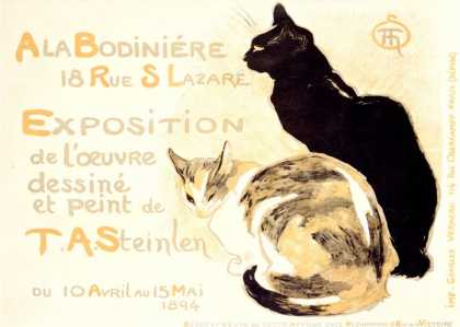 affiche chats