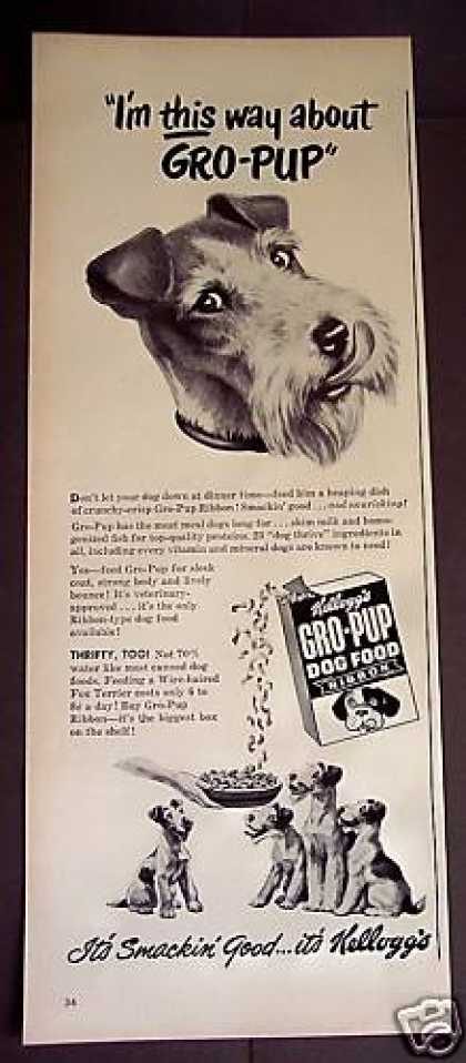 Wire Haired Terrier? Gro-pup Dog Food (1949)
