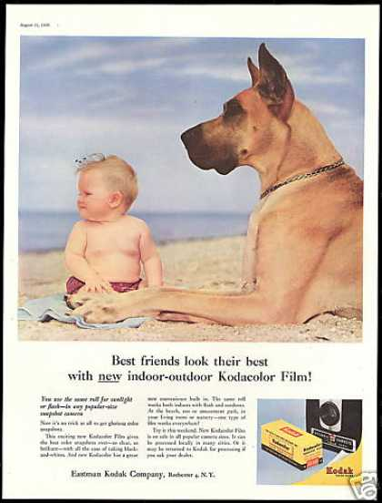 Great Dane Dog Baby Kodak Flim (1956)