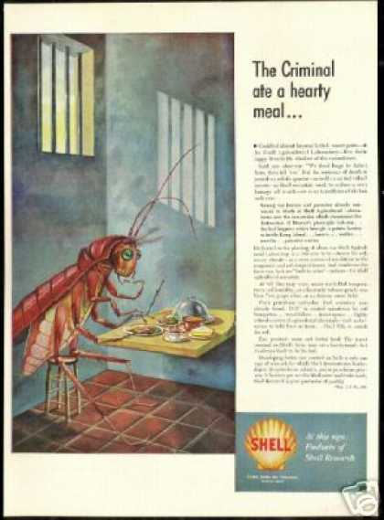 Grasshopper Jail Shell Laboratory Research (1949)