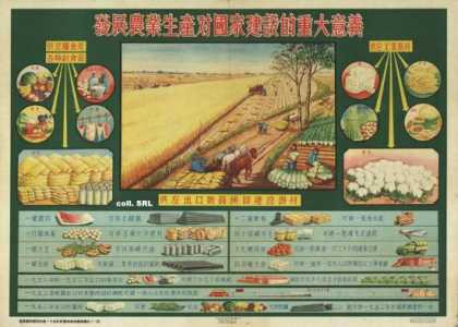 The important meaning of the development of agricultural production for the construction of the nation (1956)