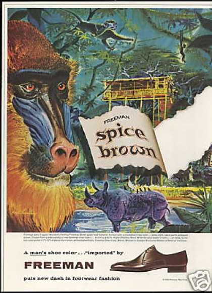Baboon Monkey Paul Haurlin Art Freeman Shoe (1959)