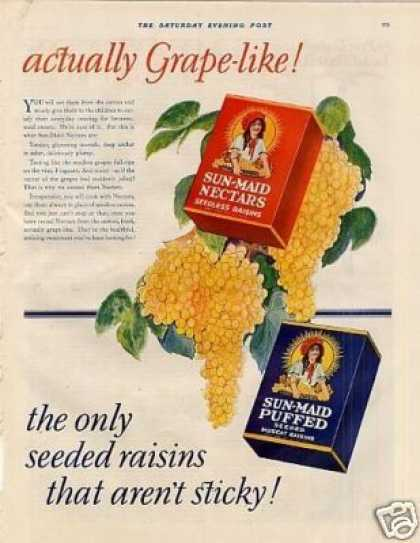 Sun-maid Raisins Color Ad 2 Page (1928)