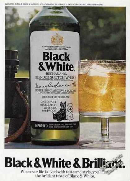 Black & White & Brilliant Scotch (1977)
