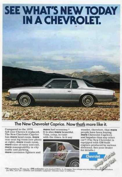 Chevrolet Caprice Photo Mountains In Back (1977)
