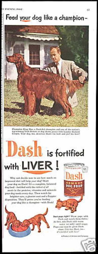 Irish Setter Champion King-Size Dash Dog Food (1952)