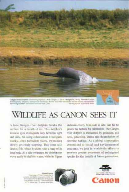 Canon PowerShot Pro 70 Digital Camera – Granges River Dolphin (1999)