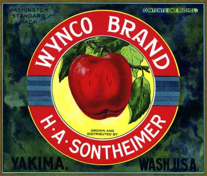 Wynco Apples, c. s (1920)