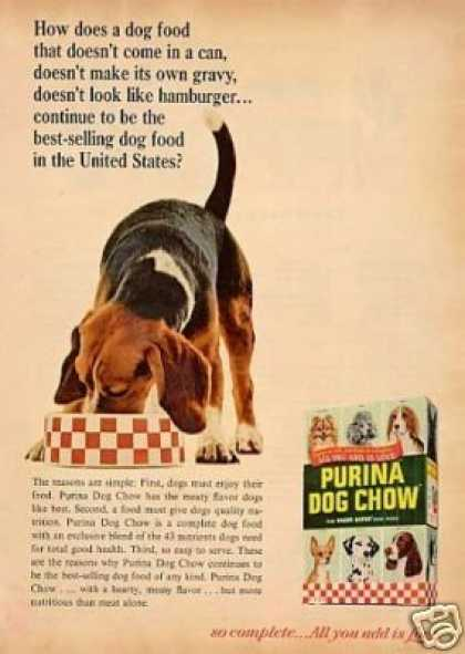 Purina Dog Chow Ad Beagle (1966)