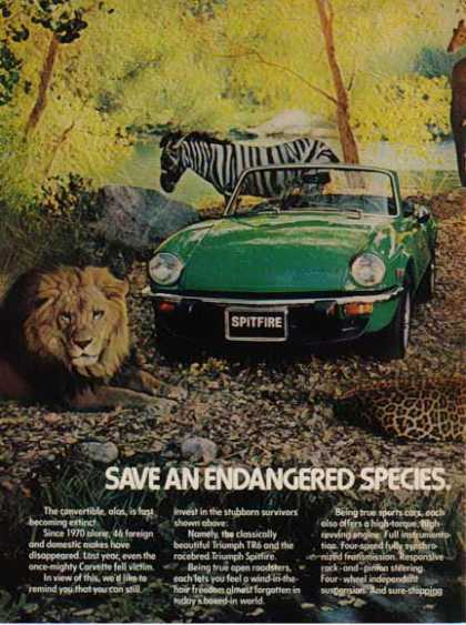 Triumph TR6 Spitfire Car – Save an Endangered Species (1976)
