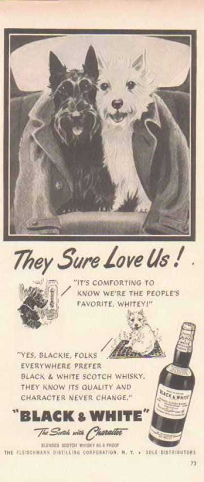 Black & White Scotch Whiskey Scottish Terriers – They Sure Love Us (1952)