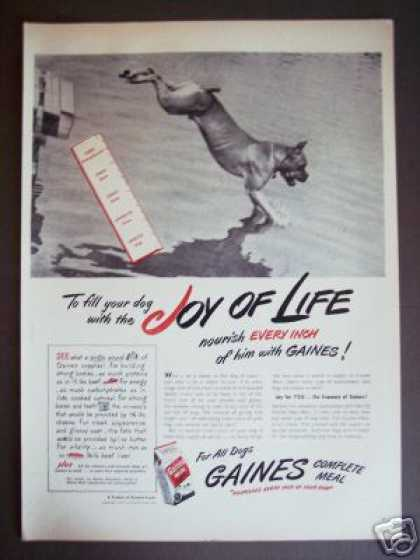 Swimming Boxer Gaines Dog Food Original (1947)